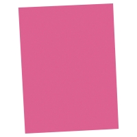 Lyreco fardes chemise A4 carton 250g rose - paquet de 100