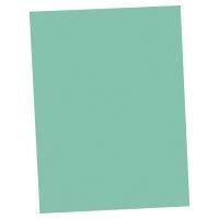Lyreco vouwmappen A4 karton 250g groen - pak van 100
