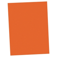PAQUET 100 CHEMISES LYRECO 220G 24X32 ORANGE