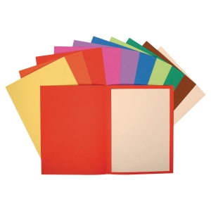 EXACOMPTA FOREVER RECYCLED FOLDERS ASSORTED - BOX OF 100