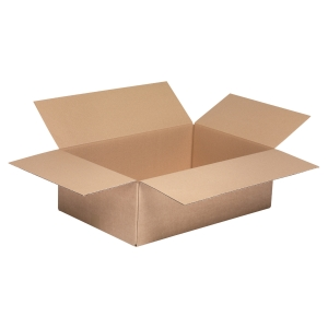 American kraft box single wave 310 x 220 x 100 - pack of 25