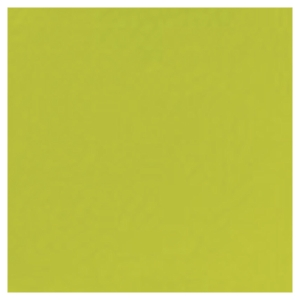 Duni servetten kiwi 33 x 33 cm - pak van 500