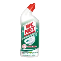 WC NET DISINCROSTANTE E DISINFETTANTE IN GEL 700 ML