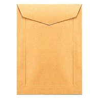 Speciale enveloppen loonzakjes 115x160mm 70g bruin - doos van 1000