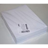 Ministerpapier geruit A4 80g - pak van 240 vellen