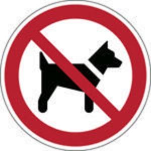 Brady P021 verbodsteken honden of dieren verboden, zelfklevend, 200 mm, per stuk