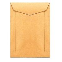 Enveloppes spéciales sacs de paie 115x160mm 70g brunes - boite de 1000