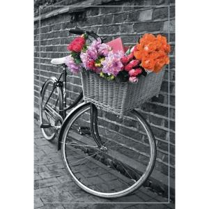 cartes de voeux velo - fleurs  - paquet de 6