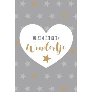 cartes de voeux naissance de bebe nl - paquet de 6