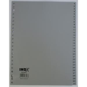 IndX intercalaires numériques 31 touches PP 23 trous
