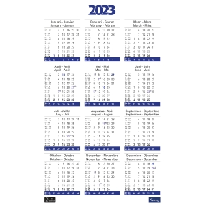 Lyreco calendrier poster annuel 43x62cm