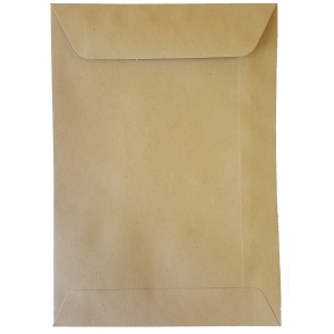 Enveloppes spéciales sacs de paie 120x170mm 70g brunes - boite de 1000