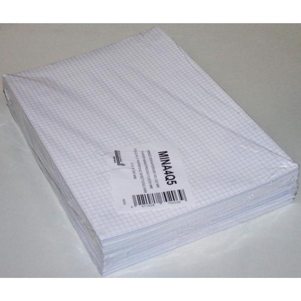 Papier ministre quadrillé A4 80g - paquet de 240 feuilles