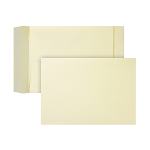 Bags 262x371x38mm peel and seal 170g cream - box of 125