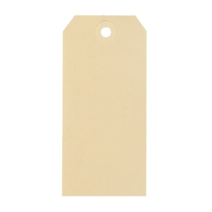 Strung tags with hole for shipment 55x110mm chamois - box of 1000
