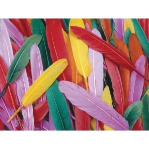 Colorations  pluimen 10 cm assorti kleuren - pak  van 145