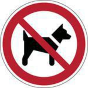 Brady PP pictogram P021 Dieren verboden 100mm