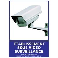 INDICATEUR D ETABLISSEMENT SOUS VIDEO SURVEILLANCE EN PVC 300X420MM