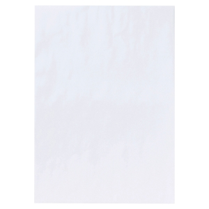 Boite 250 pochettes recyclees blanche sans soufflet c4 90g siliconne 169318