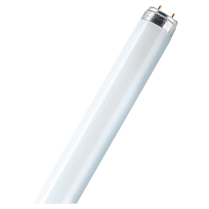 Tube fluorescent Osram - 36 W - culot G13