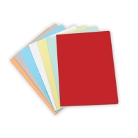 Pack de 50 subcarpetas  folio  cartulina tabaco/bicolor 235g2