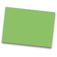 Pack de 50 cartulinas IRIS de 185 g/m2 A3 color verde billar
