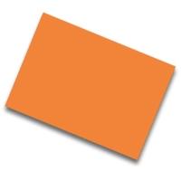 Pack de 25 cartulinas FABRISA 50x65 170g/m2 color naranja