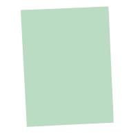 ลีเรคโก แฟ้มพับกระดาษ PEFC 250 แกรม A4 เขียว 100 เล่ม
