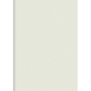 ORCA PLASTIC FOLDERS PP A4 WHITE - PACK OF 12