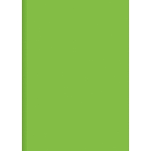 ORCA PLASTIC FOLDERS PP A4 GREEN - PACK OF 12