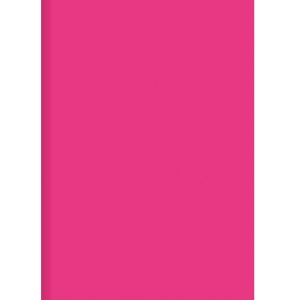 ORCA PLASTIC FOLDERS PP A4 PINK - PACK OF 12