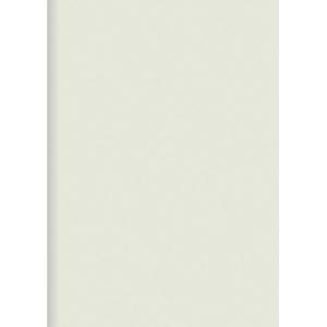 ORCA PLASTIC FOLDERS PP F WHITE - PACK OF 12