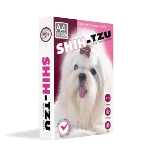 SHIH-TZU COPY PAPER A4 70G - WHITE - REAM OF 450 SHEETS