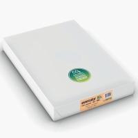 Kopierpapier Evercolor 3000, A3, 80g, lachs, 500 Blatt