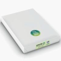 Kopierpapier Evercolor 3000, A3, 80g, hellgrün, 500 Blatt