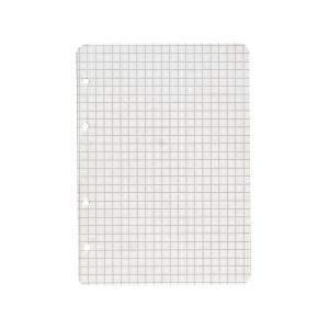 Ringbucheinlagen Landre 392510022, A5, kariert, 100 Blatt
