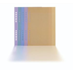 Notizpapier Tempus BF01G, kariert farbig, A5, 100 Blatt