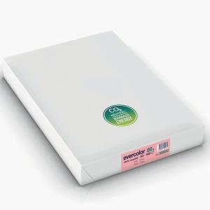 Kopierpapier Evercolor 3000, A3, 80g, rosa, 500 Blatt