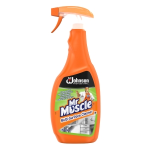 MR MUSCLE MULTI SURFACE CLEANER 750ML