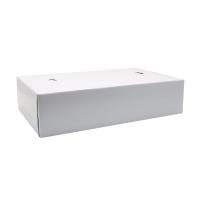 盒裝紙巾 - 100張裝