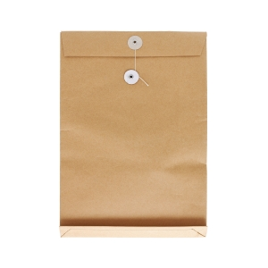 Brown Envelope with String 9 x 12 x 2 inch
