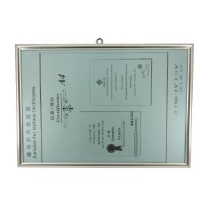 Frame A4 Silver