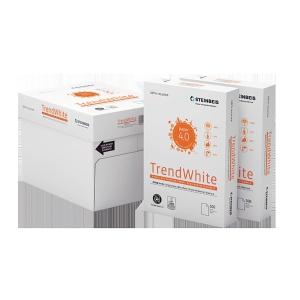 Steinbeis 100% 再生纖維 A4 多功能影印紙 80 磅 - 每捻500張
