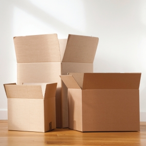 雙坑紙箱 19吋x24吋x19吋