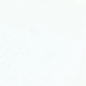 Servietter Duni, 1-lag, 33 x 33 cm, hvid, pakke a 600 stk.