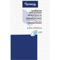 BLÄDDERBLOCK LYRECO RUTAT 65X100CM 70G 5 BLOCK/FP
