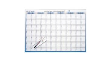 WRITERAZE PERPETUAL YEAR PLANNER + DRY ERASE MARKER500 X 700MM - EACH