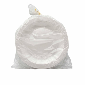 Biodegradable Disposable Plates 9 - Pack of 50