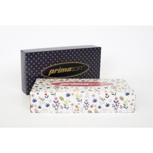 Astra papírzsebkendő, 2-rétegű, 100 darab