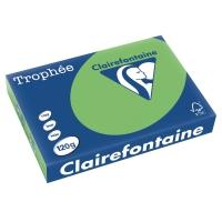 Kopierpapier Trophee 1293 A4, 120 g/m2, maigrün, Packung à 250 Blatt